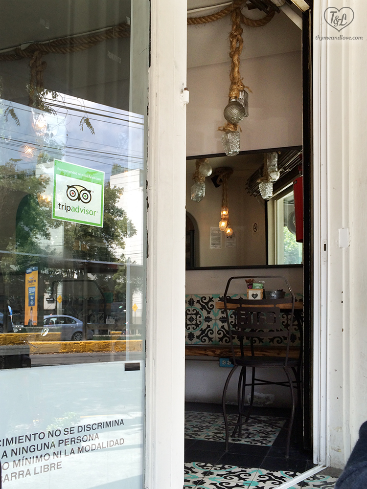Cate de mi Corazon | Vegetarian + Vegan Restaurant in Mexico City