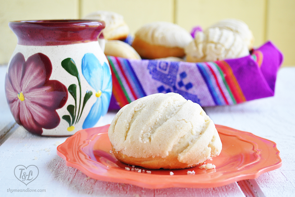 mexican-pan-dulce-conchas