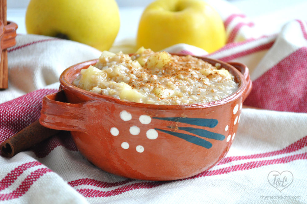 Apple Steel Cut Oats: the perfect fall breakfast!