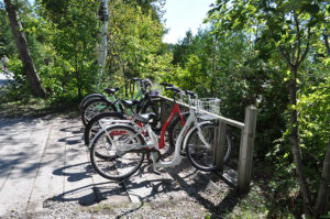 5 Awesome things to do on Mackinac Island including riding bikes around the island! #michigan #travel