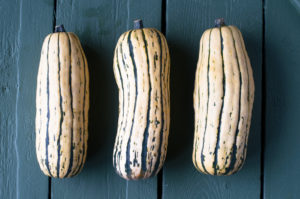 Delicata squash is roasted then stuffed with a fall inspired apple quinoa stuffin