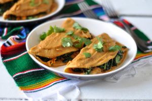 Lentil Sauce Enchiladas from The Vegan Mexican Cookbook