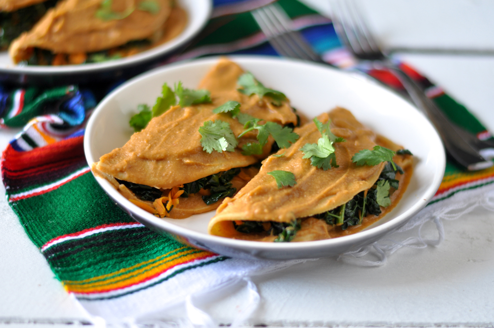 Lentil Sauce Enchiladas from The Vegan Mexican Cookbook
