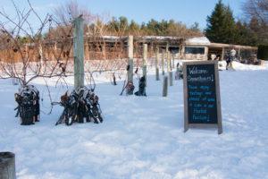 Traverse City Snowshoe Wine & Brew Tour