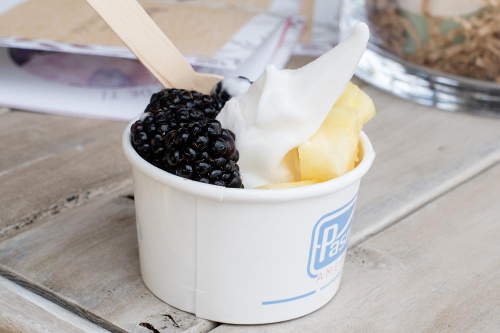 Vegan frozen coconut yogurt at #WeAllGrow