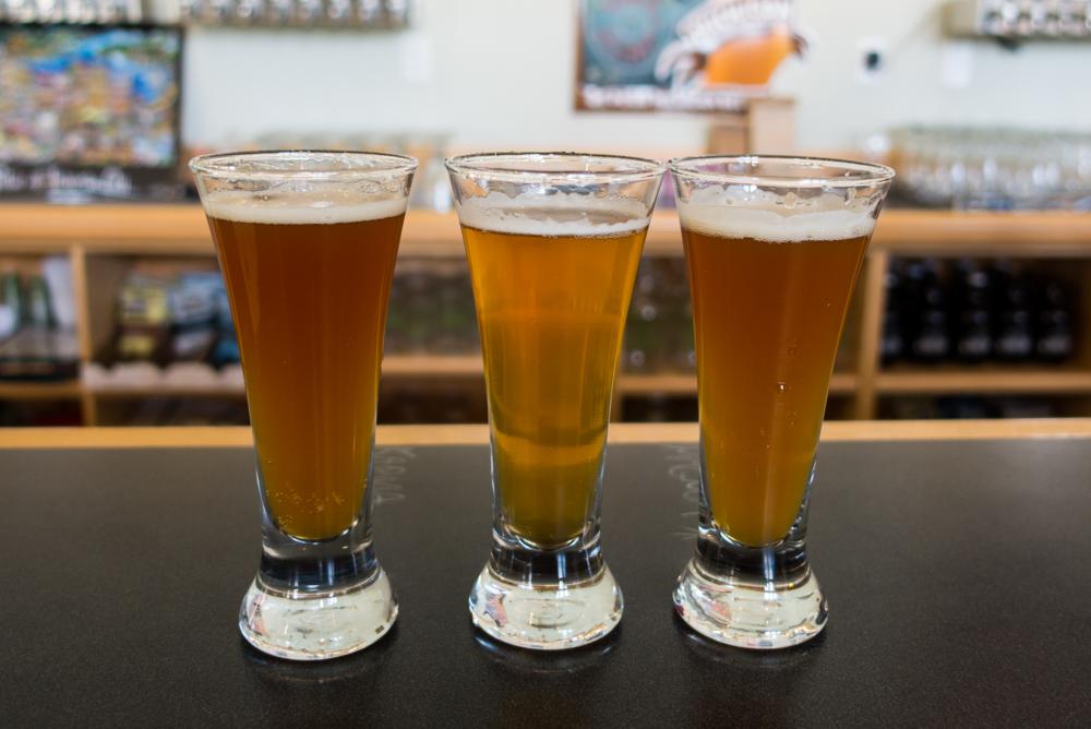 Brewery Terra Ferma located in Traverse City, Michigan