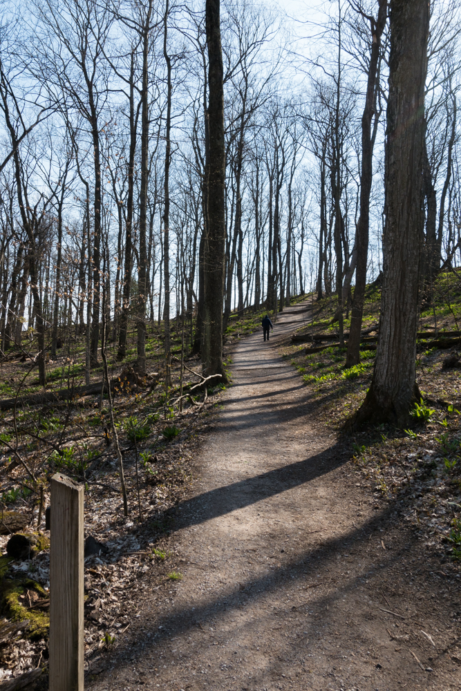 Hiking the Empire Bluff Trail at Sleeping Bear Dunes National Lakeshore