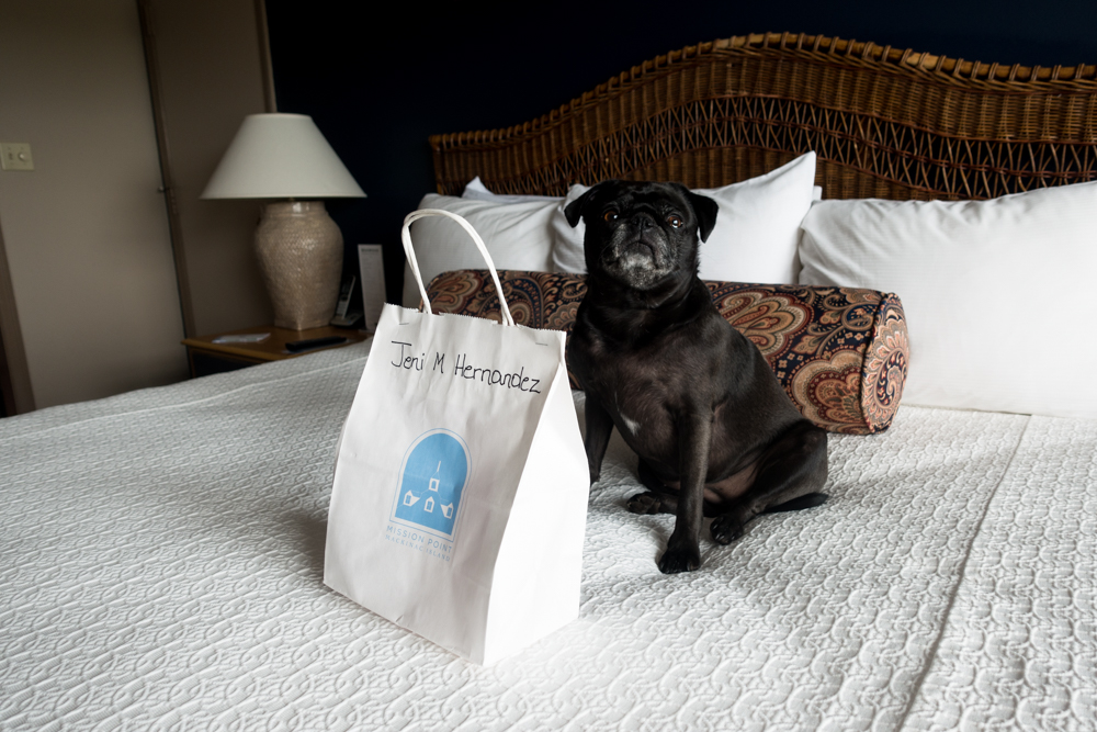 Mission Point Resort: A Dog-Friendly Oasis. The resort offers a Pooch at the Point Package for your dog!