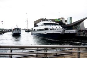 Boston Harbor Cruises Whale Watching Tour