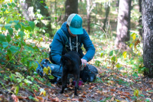 Tips for fall hiking with your dog. How to be prepared for your next hike together.