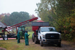 visting a cranberry harvest