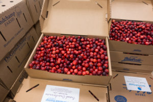 Fresh Cranberries are perfect for fall and holiday recipes.