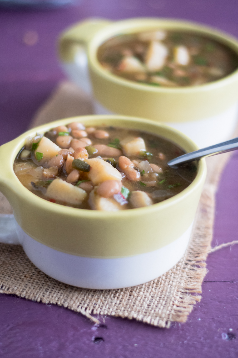 Slow Cooker Mexican Bean and Potato Soup is layered with flavor from 3 different chiles. Great for a cold night!