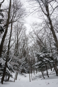 Ludington, Michigan Winter Getaway: What to See, Do and Eat: a travel guide on what to see, do and eat in Ludington, Michigan during the winter. #winter #travel