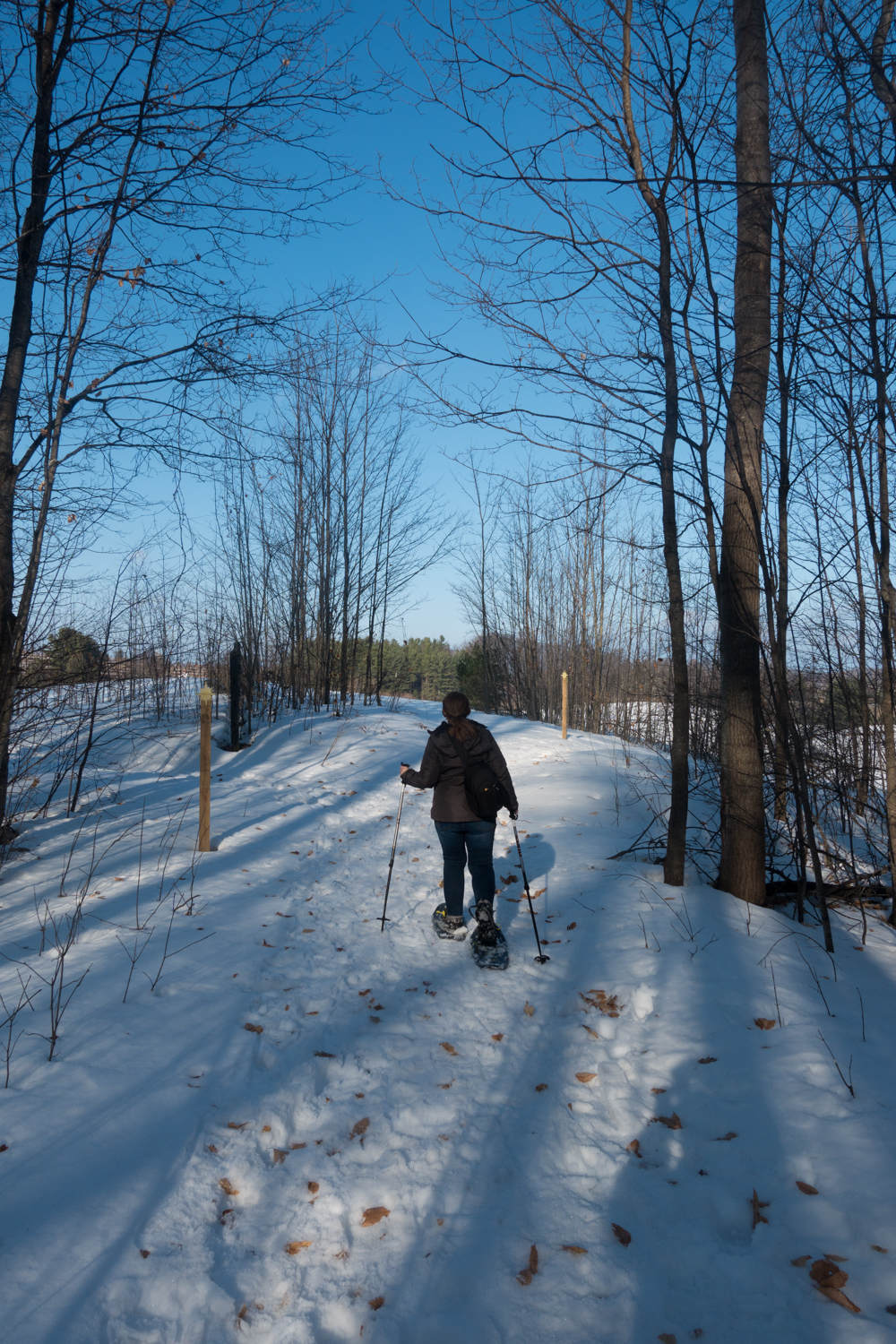 Things to do in Traverse City, Michigan. #winter #travel