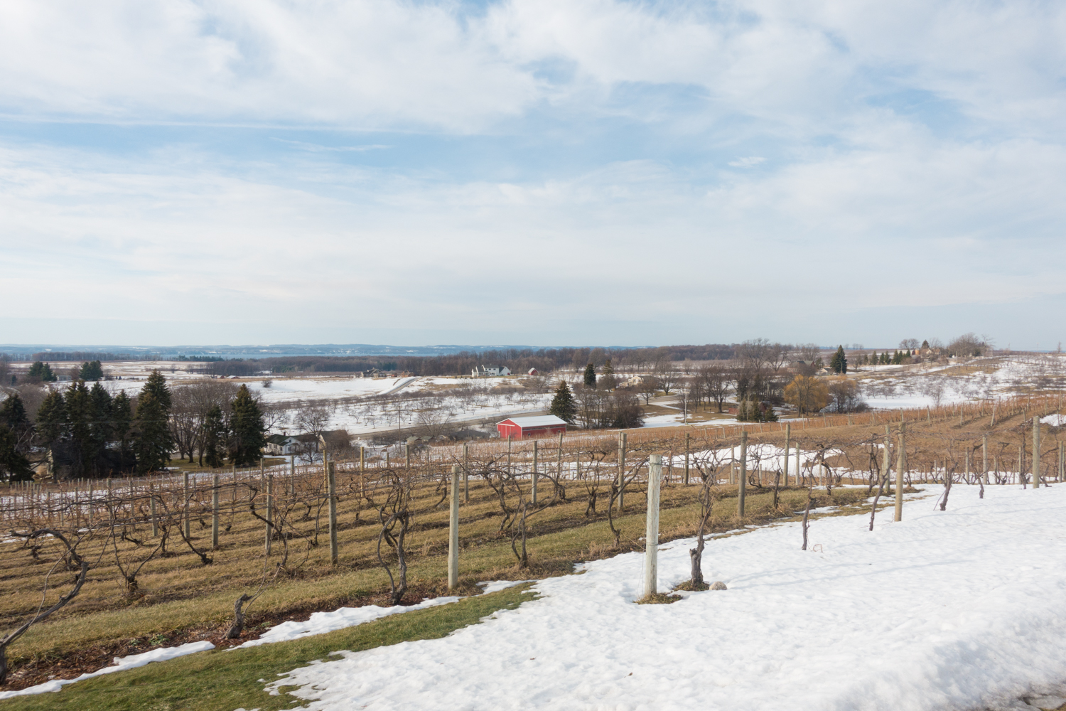 Chateau Chantal Ice Wine Harvest Festival #michigan #wine