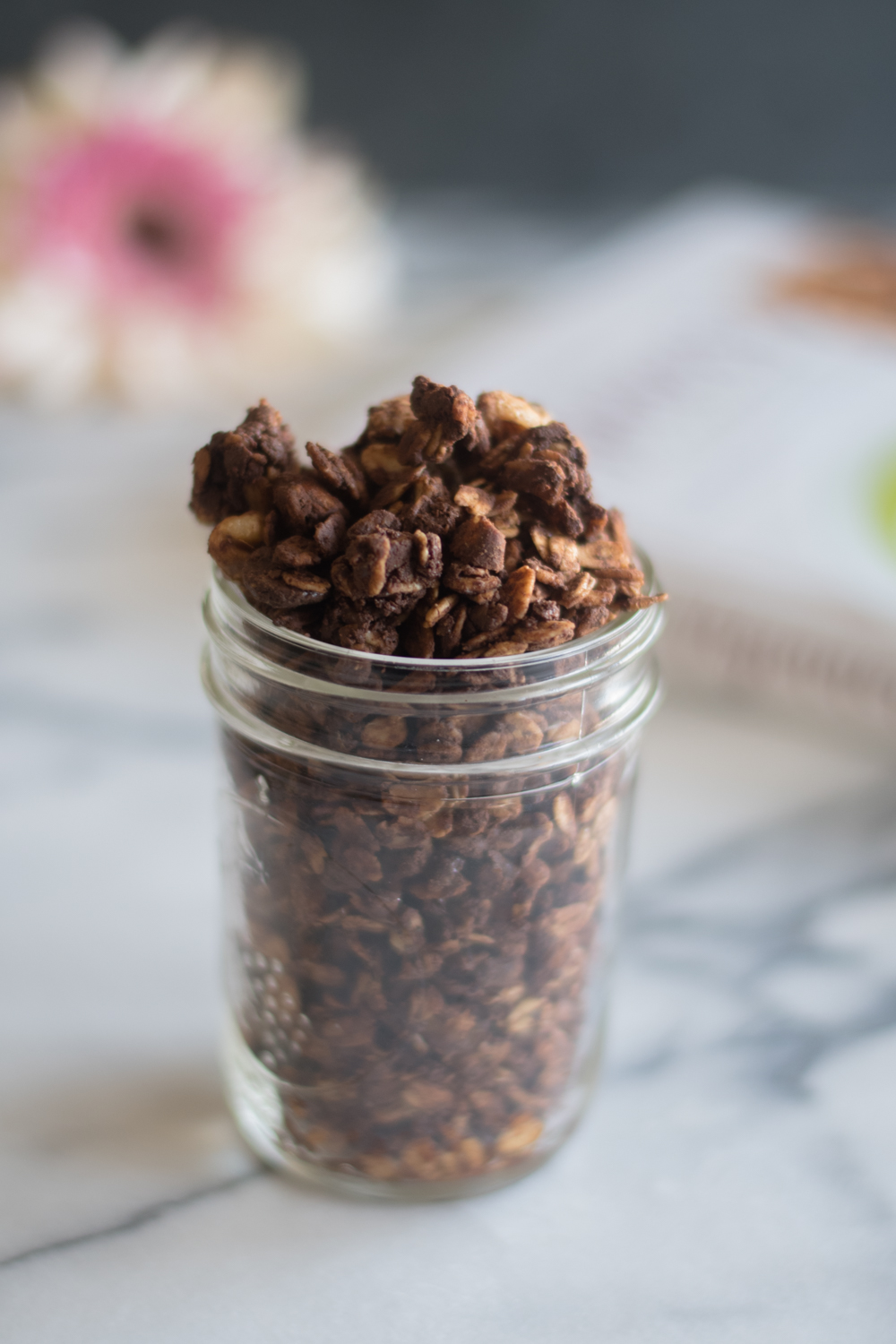 Nutty Chocolate Granola from The Veginner's Cookbook is the perfect breakfast for chocolate lovers! #breakfast #vegan