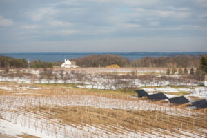 If you haven't had the chance to experience Northern Michigan wineries, you are in for a real treat!