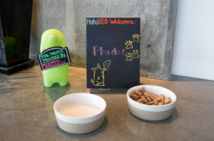 HotelRed: Pet-Friendly Hotel in Madison, WI #hotel #Midwest #Travel #Wisconsin #Madison