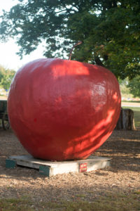 Robinette's is a staple here in West Michigan. It is a favorite destination for families to visit during the fall. You'll also find lots of seasonal fruits and products to purchase inside the apple haus.