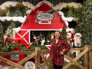 guide to visiting Bronner's will show you why you need to visit this magical place. Plus some tips for your visit!