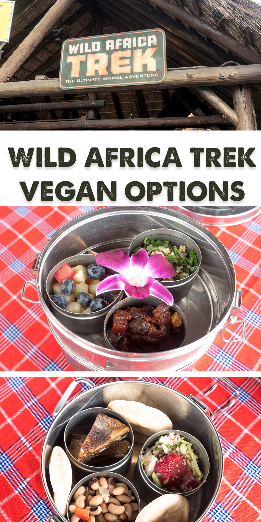 Vegan options available on Disney's Wild Africa Trek in Animal Kingdom. #travel #vegan #disney #Disneyworld #animalkingdom #vegantravel